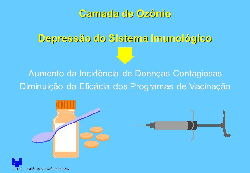 Camada de Ozônio Depressão do Sistema Imunológico Aumento da Incidência de Doenças Contagiosas Diminuição da Eficácia dos Programas de Vacinação CETES
