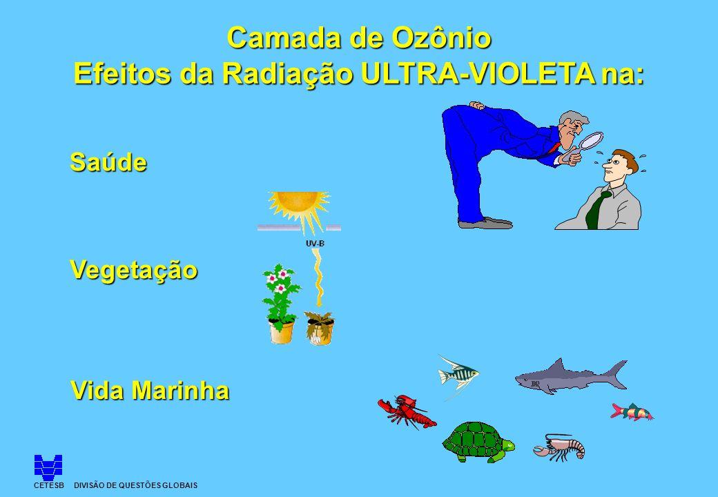 Saúde Vegetação Vida Marinha Camada de Ozônio Efeitos da Radiação ULTRA-VIOLETA na: