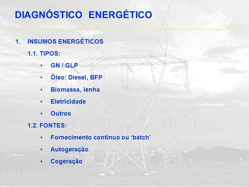 1. INSUMOS ENERGÉTICOS 1.1. TIPOS: GN / GLP Óleo: Diesel, BFP Biomassa, lenha Eletricidade Outros 1.2. FONTES: Fornecimento contínuo ou batch Autogera