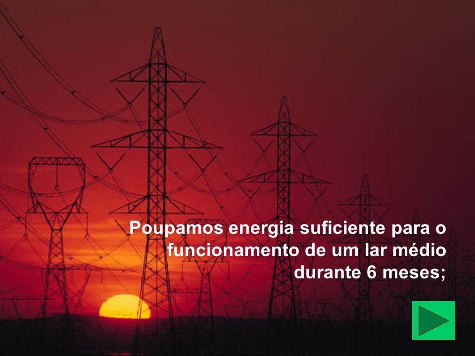 Poupamos energia suficiente para o funcionamento de um lar médio durante 6 meses;