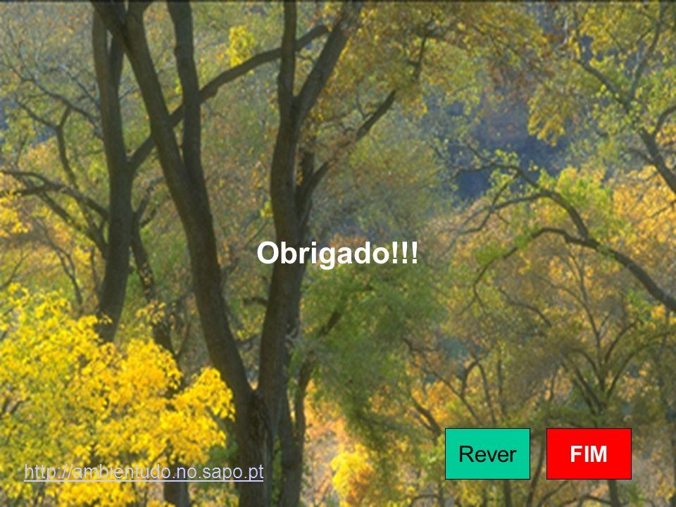 Obrigado!!! ReverFIM http://ambientudo.no.sapo.pt