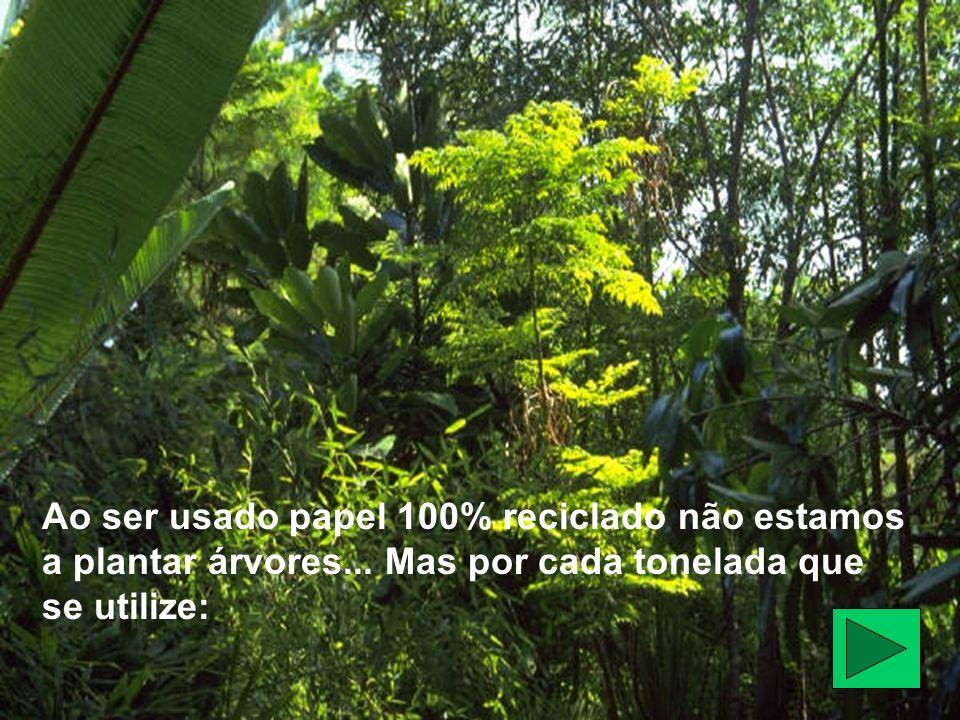 Ao ser usado papel 100% reciclado não estamos a plantar árvores... Mas por cada tonelada que se utilize: