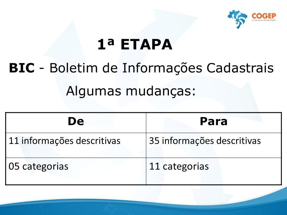 1ª ETAPA BIC - Boletim de Informações Cadastrais Algumas mudanças: DePara 11 informações descritivas35 informações descritivas 05 categorias11 categor