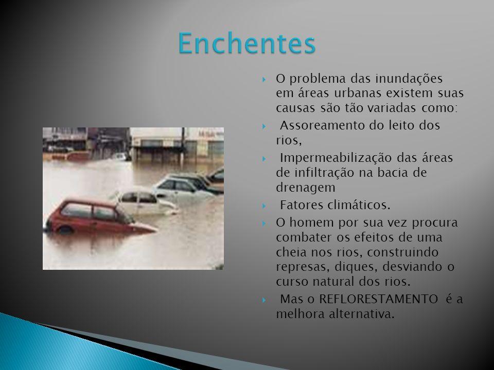 O problema das inundações em áreas urbanas existem suas causas são tão variadas como: Assoreamento do leito dos rios, Impermeabilização das áreas de infiltração na bacia de drenagem Fatores climáticos.