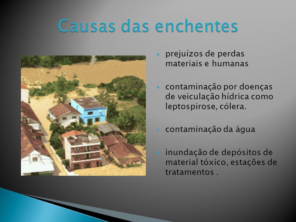 prejuízos de perdas materiais e humanas contaminação por doenças de veiculação hídrica como leptospirose, cólera.