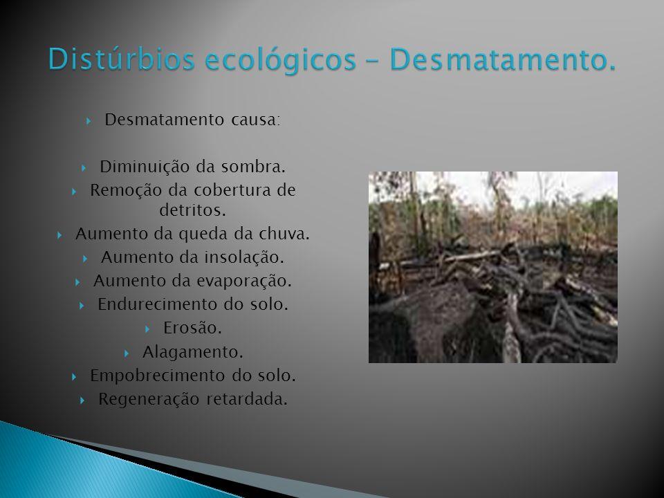 Desmatamento causa: Diminuição da sombra.Remoção da cobertura de detritos.