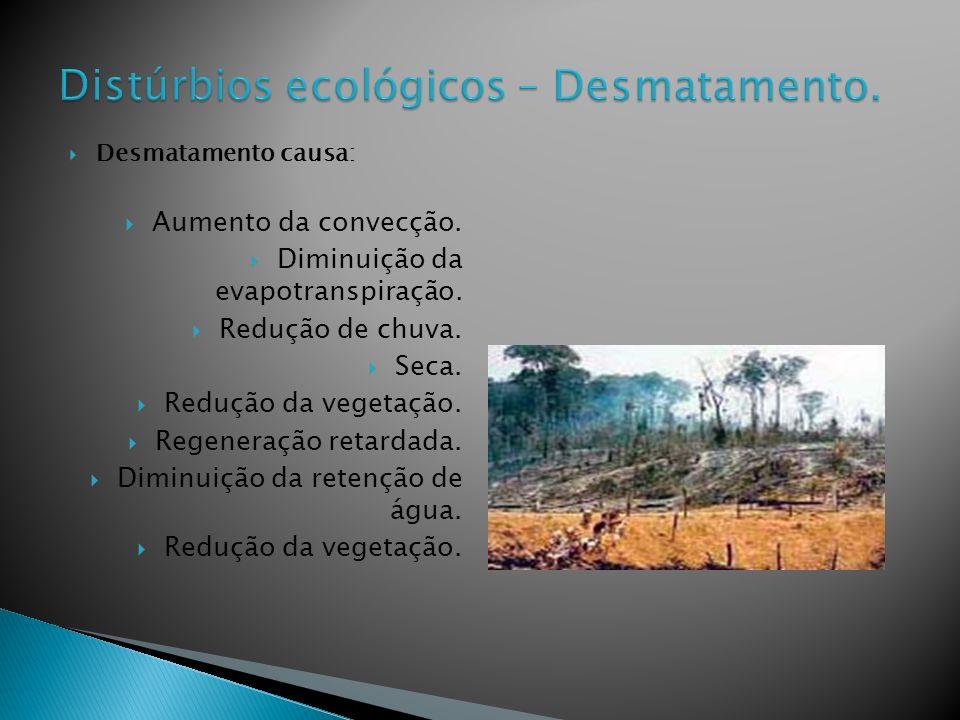 Desmatamento causa: Aumento da convecção.Diminuição da evapotranspiração.