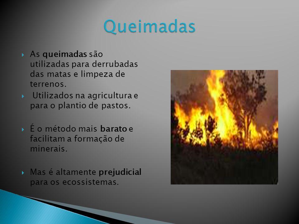 As queimadas são utilizadas para derrubadas das matas e limpeza de terrenos.