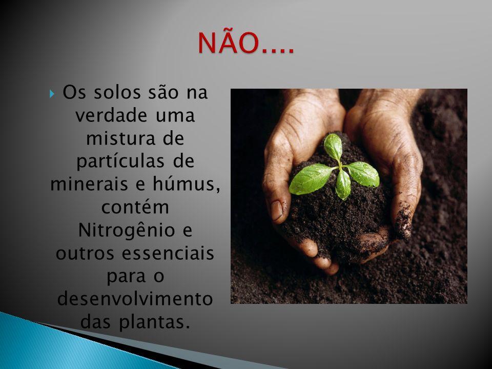 Os solos são na verdade uma mistura de partículas de minerais e húmus, contém Nitrogênio e outros essenciais para o desenvolvimento das plantas.