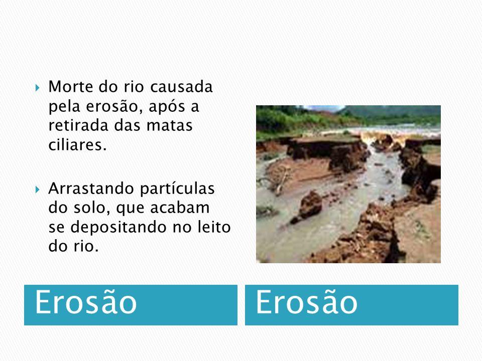 Erosão Morte do rio causada pela erosão, após a retirada das matas ciliares.
