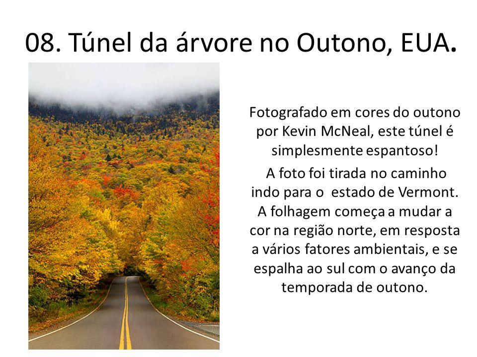 08. Túnel da árvore no Outono, EUA. Fotografado em cores do outono por Kevin McNeal, este túnel é simplesmente espantoso! A foto foi tirada no caminho