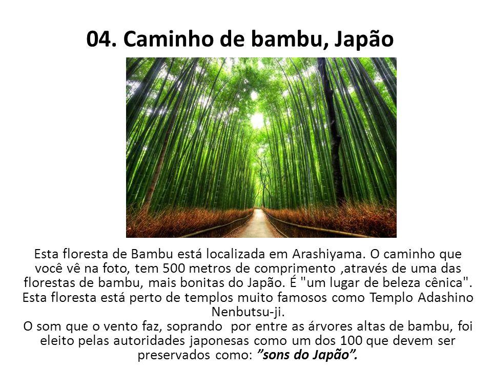 04. Caminho de bambu, Japão Esta floresta de Bambu está localizada em Arashiyama. O caminho que você vê na foto, tem 500 metros de comprimento,através