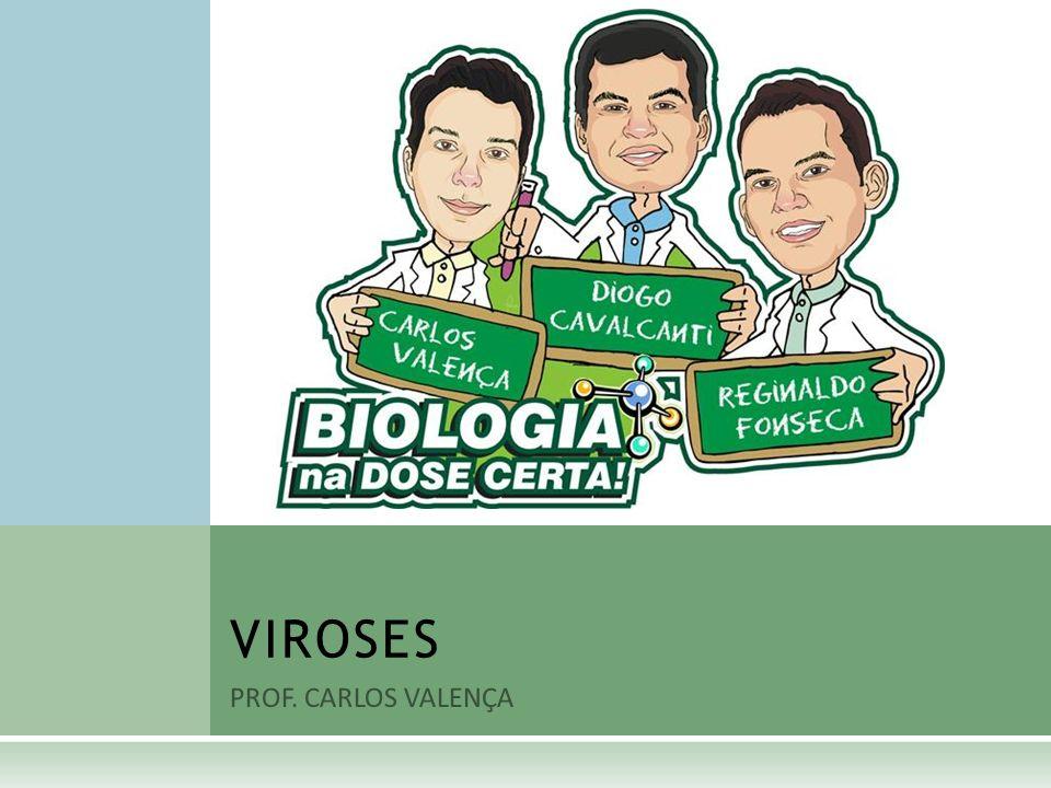 PROF. CARLOS VALENÇA VIROSES