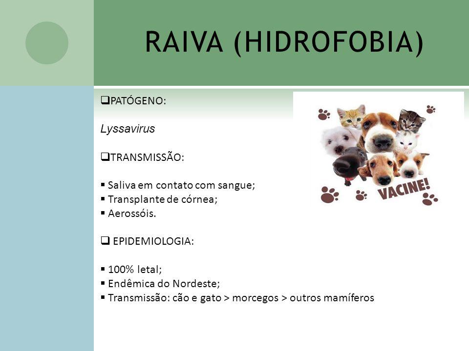 RAIVA (HIDROFOBIA) PATÓGENO: Lyssavirus TRANSMISSÃO: Saliva em contato com sangue; Transplante de córnea; Aerossóis. EPIDEMIOLOGIA: 100% letal; Endêmi
