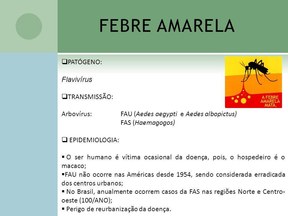 FEBRE AMARELA PATÓGENO: Flavivírus TRANSMISSÃO: Arbovírus: FAU (Aedes aegypti e Aedes albopictus) FAS (Haemagogos) EPIDEMIOLOGIA: O ser humano é vítim