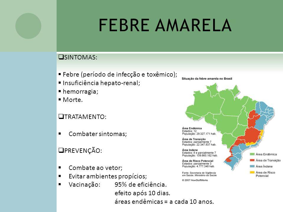 FEBRE AMARELA SINTOMAS: Febre (período de infecção e toxêmico); Insuficiência hepato-renal; hemorragia; Morte. TRATAMENTO: Combater sintomas; PREVENÇÃ