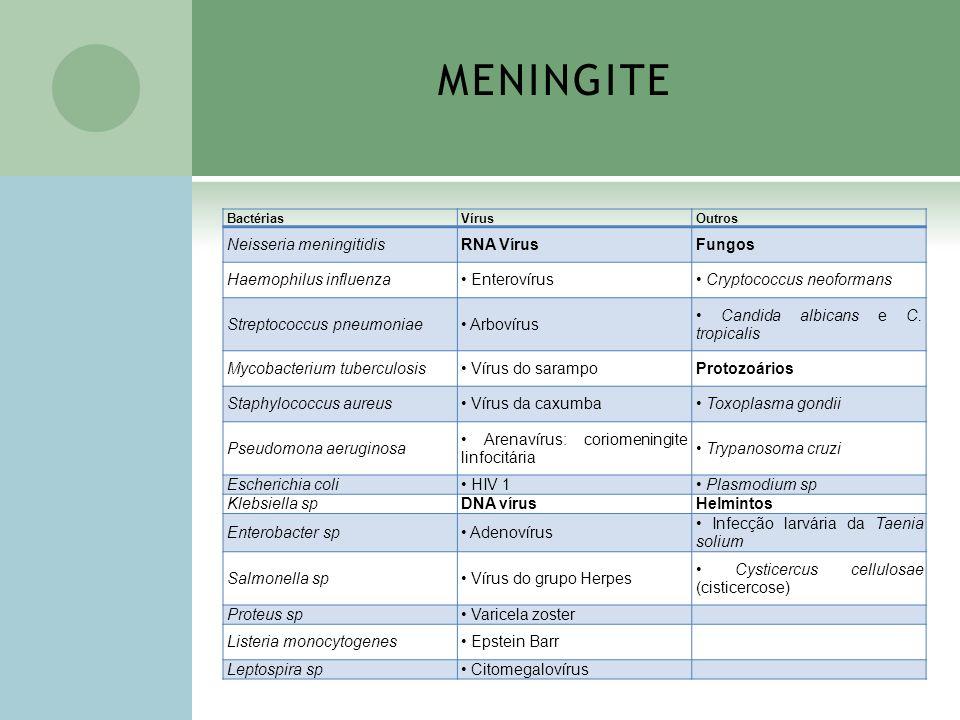 MENINGITE BactériasVírusOutros Neisseria meningitidisRNA VírusFungos Haemophilus influenza Enterovírus Cryptococcus neoformans Streptococcus pneumonia