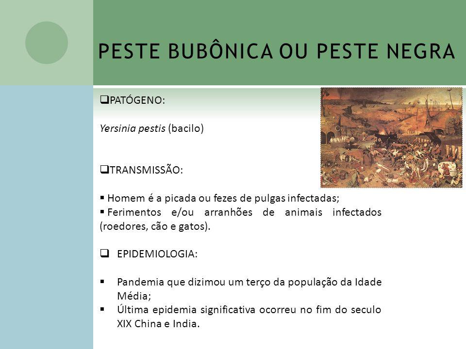 PESTE BUBÔNICA OU PESTE NEGRA PATÓGENO: Yersinia pestis (bacilo) TRANSMISSÃO: Homem é a picada ou fezes de pulgas infectadas; Ferimentos e/ou arranhõe