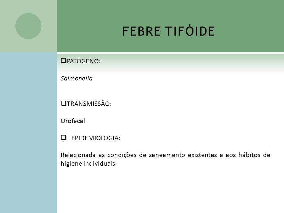 FEBRE TIFÓIDE PATÓGENO: Salmonella TRANSMISSÃO: Orofecal EPIDEMIOLOGIA: Relacionada às condições de saneamento existentes e aos hábitos de higiene ind