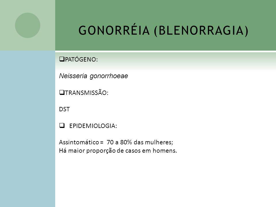 GONORRÉIA (BLENORRAGIA) PATÓGENO: Neisseria gonorrhoeae TRANSMISSÃO: DST EPIDEMIOLOGIA: Assintomático = 70 a 80% das mulheres; Há maior proporção de c