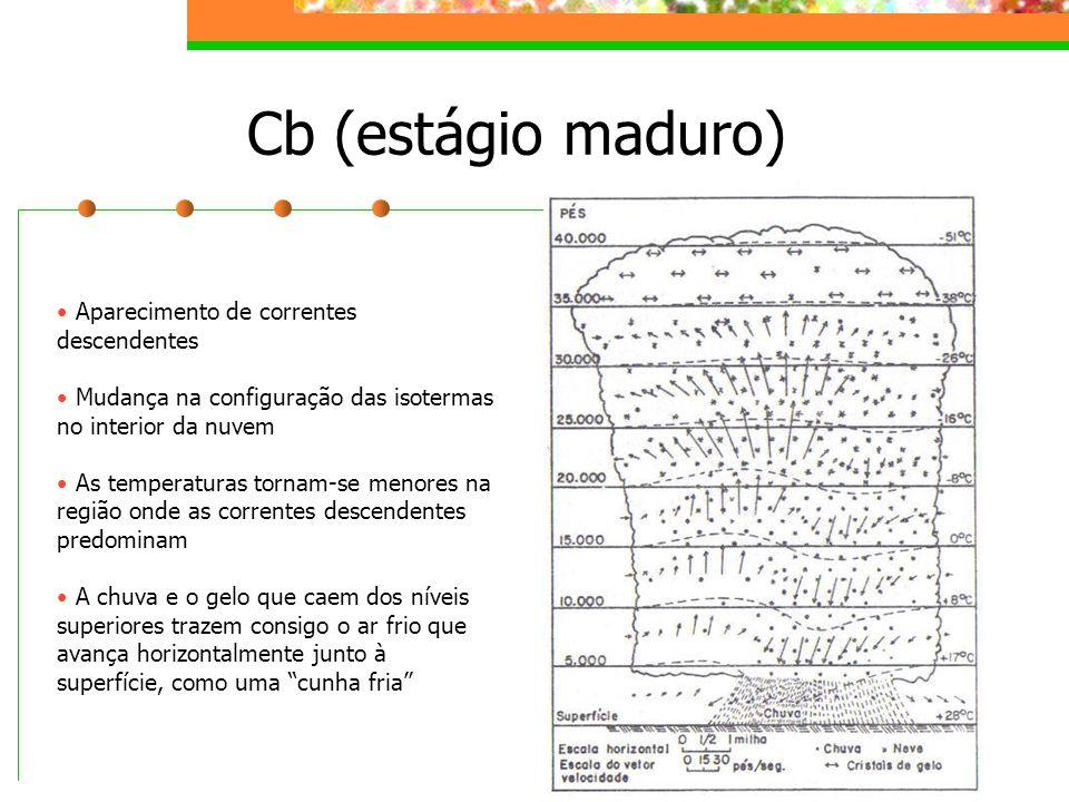 Cb (estágio maduro) Aparecimento de correntes descendentes Mudança na configuração das isotermas no interior da nuvem As temperaturas tornam-se menore