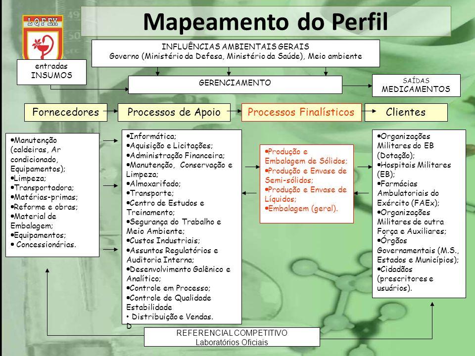 Mapeamento do Perfil INFLUÊNCIAS AMBIENTAIS GERAIS Governo (Ministério da Defesa, Ministério da Saúde), Meio ambiente GERENCIAMENTO entradas INSUMOS S