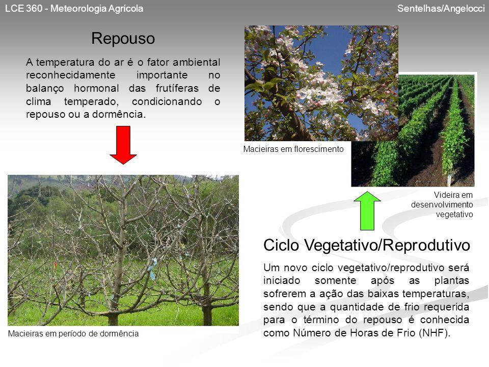 LCE 360 - Meteorologia Agrícola Sentelhas/Angelocci A temperatura do ar é o fator ambiental reconhecidamente importante no balanço hormonal das frutíf