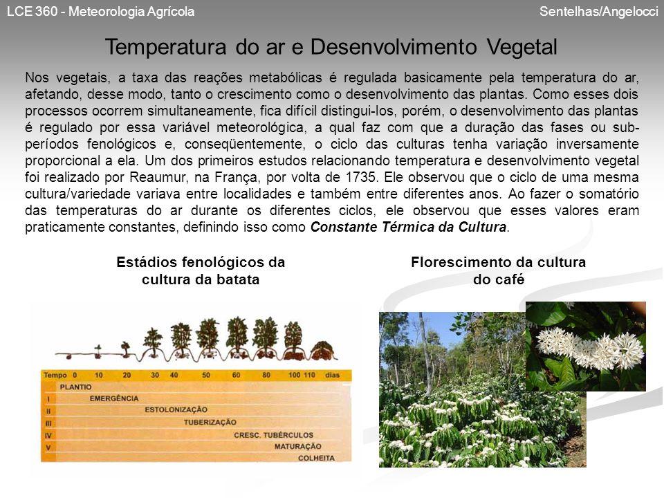 LCE 360 - Meteorologia Agrícola Sentelhas/Angelocci Temperatura do ar e Desenvolvimento Vegetal Nos vegetais, a taxa das reações metabólicas é regulad