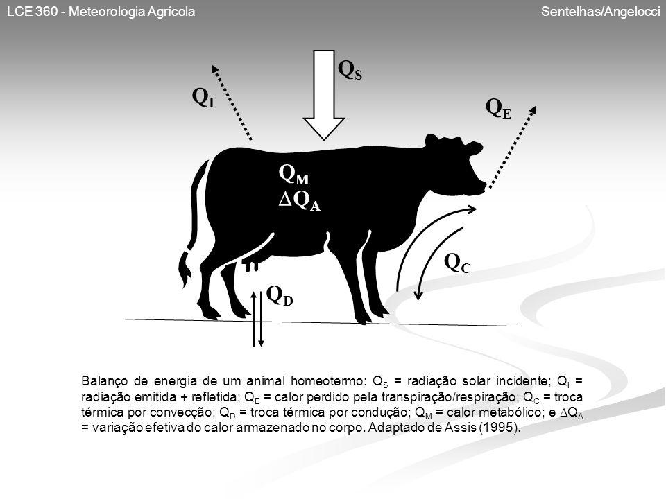 LCE 360 - Meteorologia Agrícola Sentelhas/Angelocci QSQS QIQI QEQE QCQC Q M Q A QDQD Balanço de energia de um animal homeotermo: Q S = radiação solar