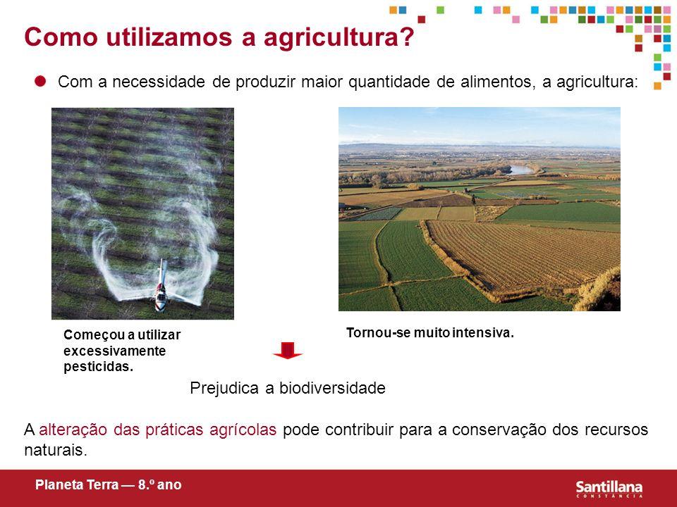 Como utilizamos a agricultura? Com a necessidade de produzir maior quantidade de alimentos, a agricultura: Prejudica a biodiversidade A alteração das