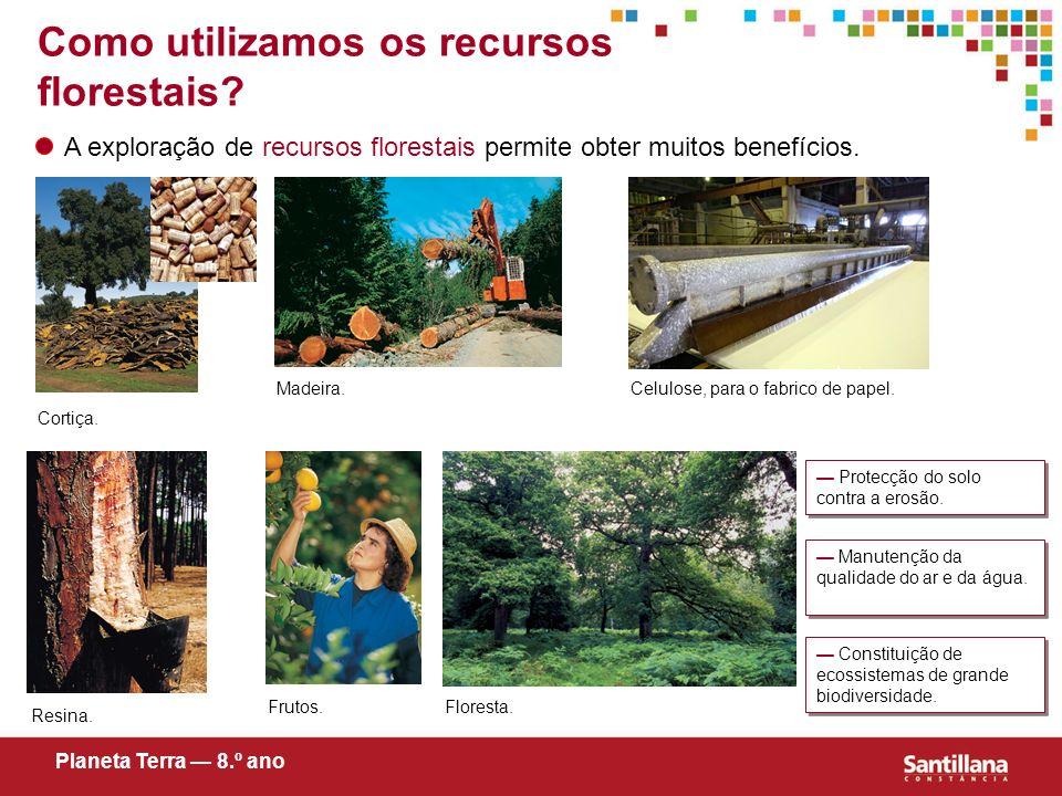 Como utilizamos os recursos florestais? A exploração de recursos florestais permite obter muitos benefícios. Cortiça. Madeira. Resina. Frutos. Celulos