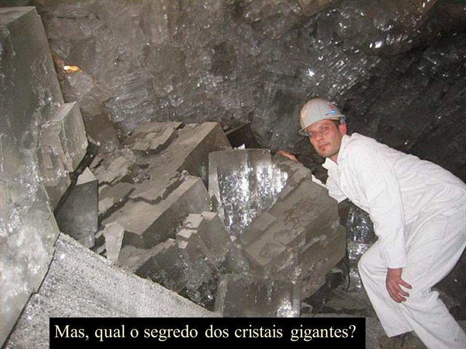 Os oficiais da Companhia Penoles que possui a mina, mantiveram as descobertas em segredo, temendo o vandalismo. Não muitas pessoas entretanto, se arri