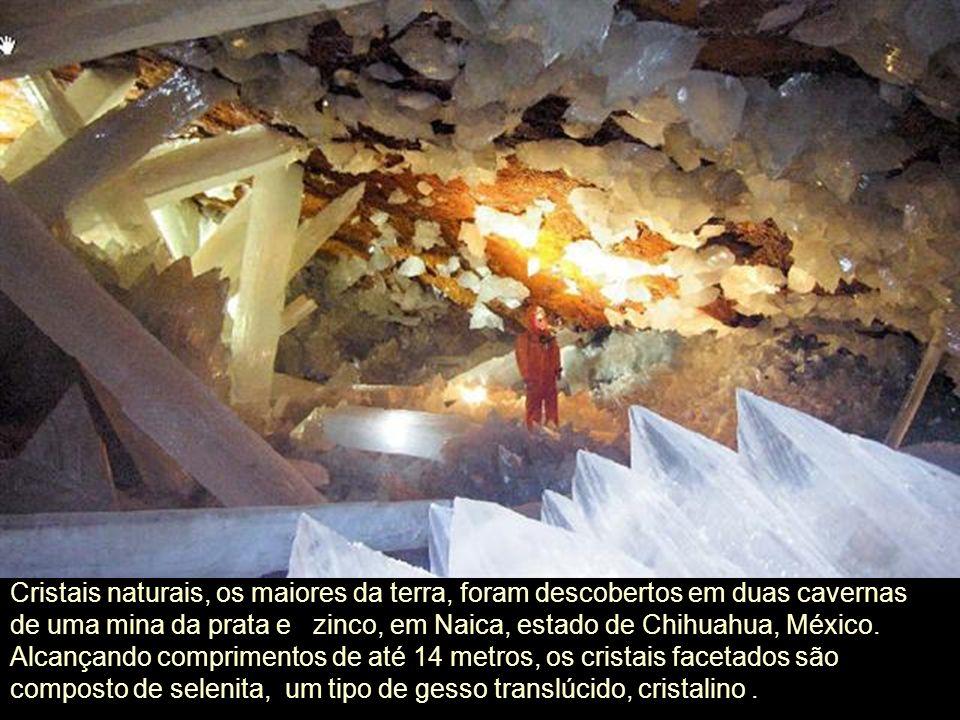 Essas grutas, com temperatura de até 60° C e humidade de 100%, o berço dos cristais gigantes! Uma floresta de cristais, os maiores do Planeta. Um luga