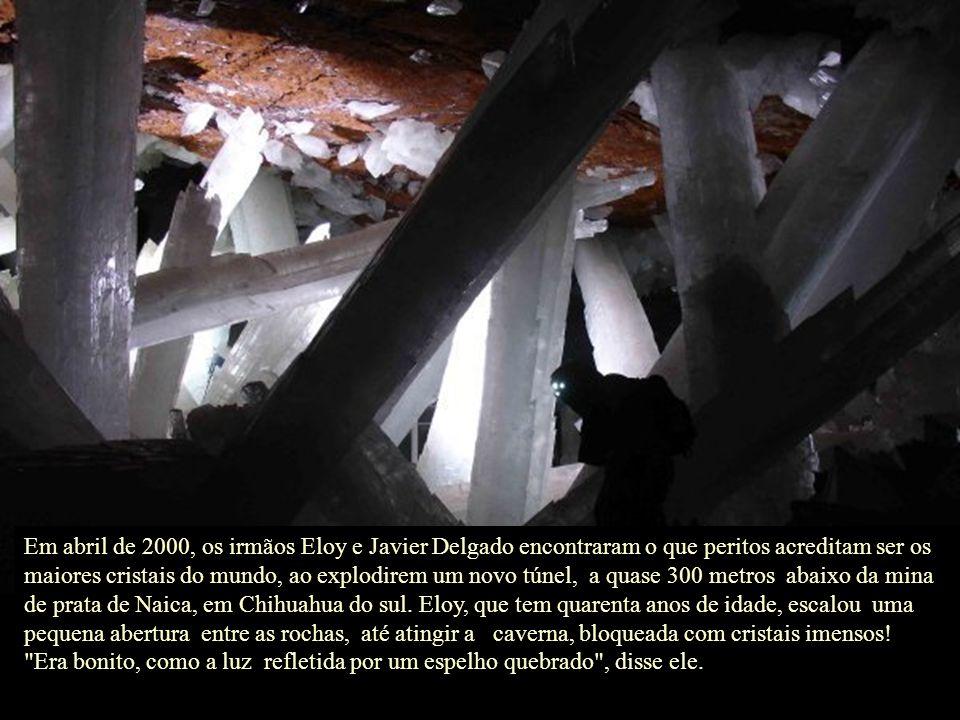 Em abril de 2000, os irmãos Eloy e Javier Delgado encontraram o que peritos acreditam ser os maiores cristais do mundo, ao explodirem um novo túnel, a quase 300 metros abaixo da mina de prata de Naica, em Chihuahua do sul.