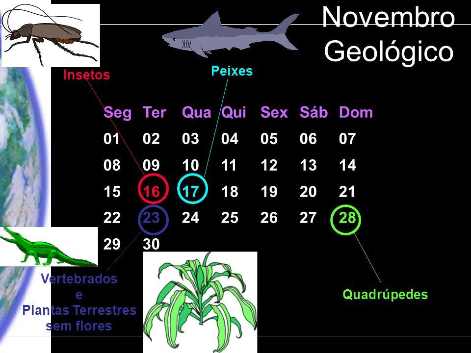 Engenharia Ambiental – POLI 2006 CLIMA: Processos, Mudanças e Impactos Departamento de Ciências Atmosféricas – IAG-USP Novembro Geológico SegTerQuaQui