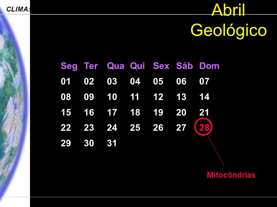 Engenharia Ambiental – POLI 2006 CLIMA: Processos, Mudanças e Impactos Departamento de Ciências Atmosféricas – IAG-USP Abril Geológico SegTerQuaQuiSexSábDom 01020304050607 08091011121314 15161718192021 22232425262728 293031 Mitocôndrias