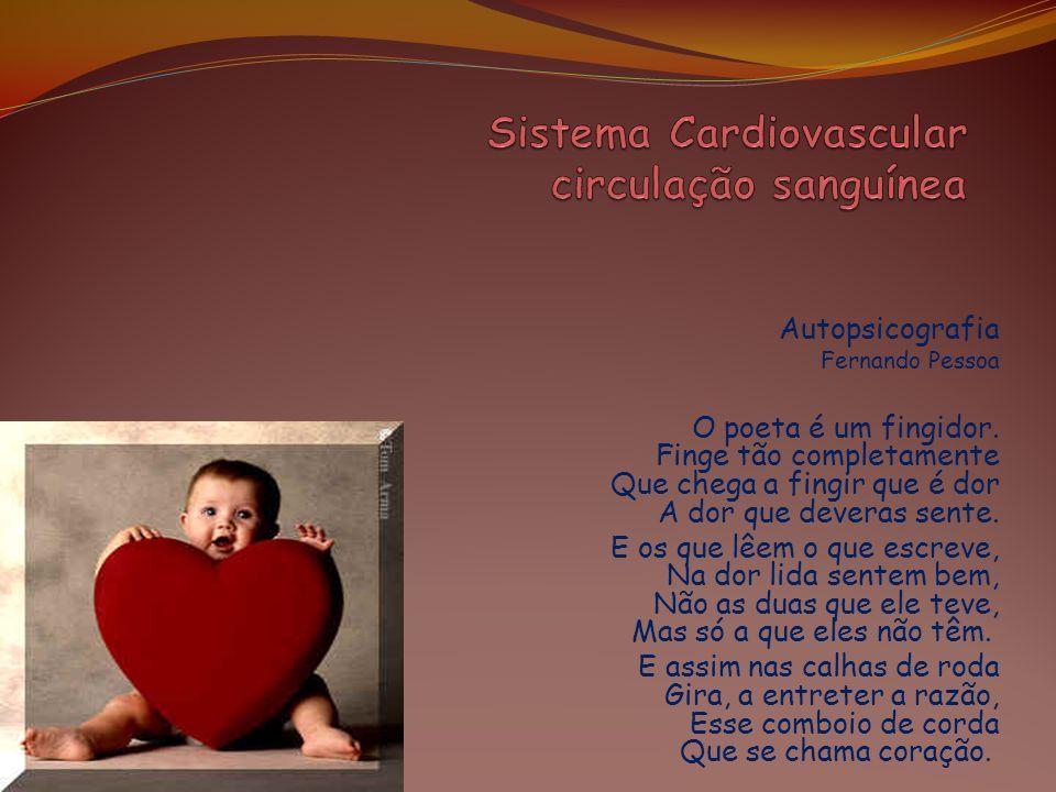 Grande Circulação Circulação Sistêmica A sístole do ventrículo esquerdo lança o sangue arterial na artéria aorta.