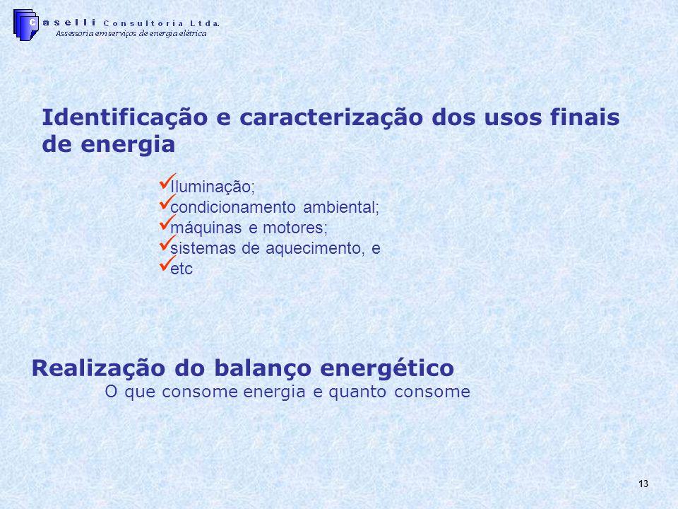 13 Iluminação; condicionamento ambiental; máquinas e motores; sistemas de aquecimento, e etc Realização do balanço energético O que consome energia e quanto consome Identificação e caracterização dos usos finais de energia
