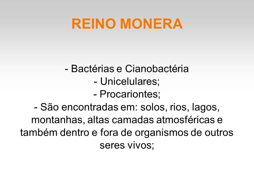 REINO MONERA - Bactérias e Cianobactéria - Unicelulares; - Procariontes; - São encontradas em: solos, rios, lagos, montanhas, altas camadas atmosféricas e também dentro e fora de organismos de outros seres vivos;