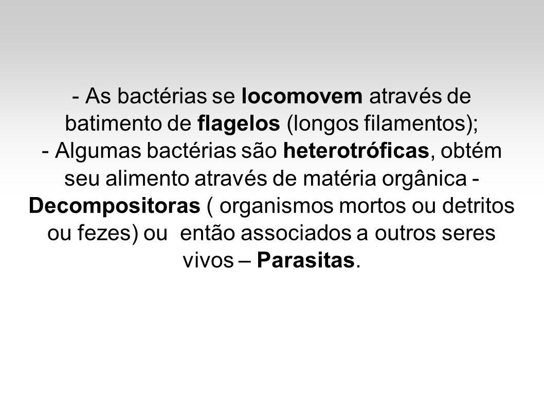 - As bactérias se locomovem através de batimento de flagelos (longos filamentos); - Algumas bactérias são heterotróficas, obtém seu alimento através de matéria orgânica - Decompositoras ( organismos mortos ou detritos ou fezes) ou então associados a outros seres vivos – Parasitas.