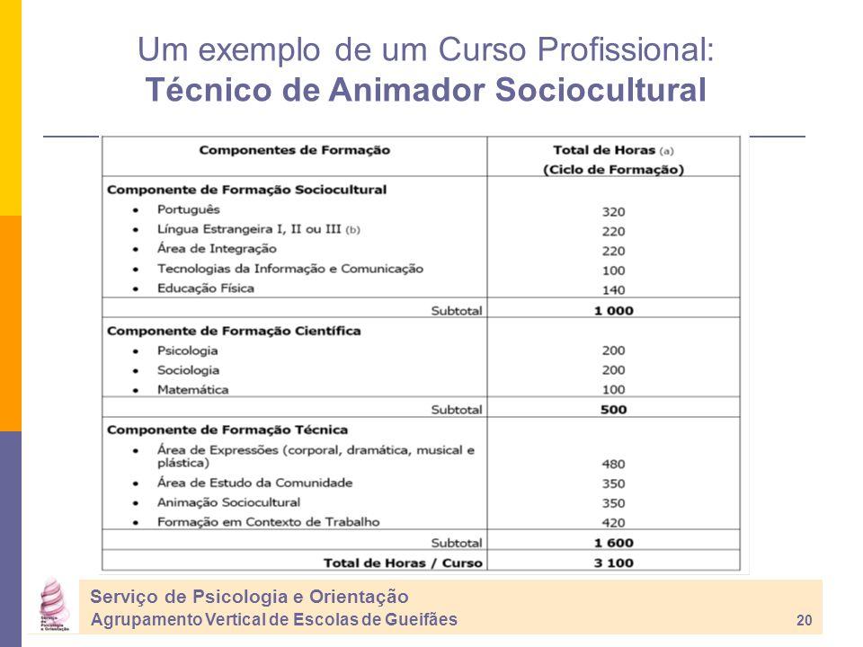 Serviço de Psicologia e Orientação Agrupamento Vertical de Escolas de Gueifães 20 Um exemplo de um Curso Profissional: Técnico de Animador Sociocultural