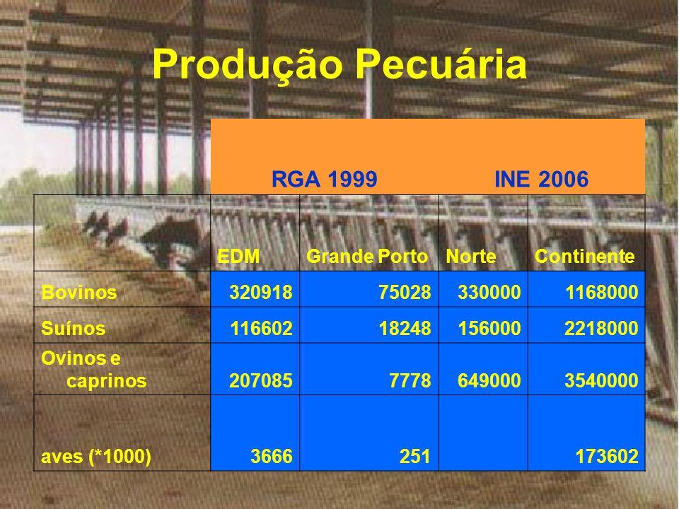Produção Pecuária RGA 1999INE 2006 EDMGrande PortoNorteContinente Bovinos320918750283300001168000 Suínos116602182481560002218000 Ovinos e caprinos2070