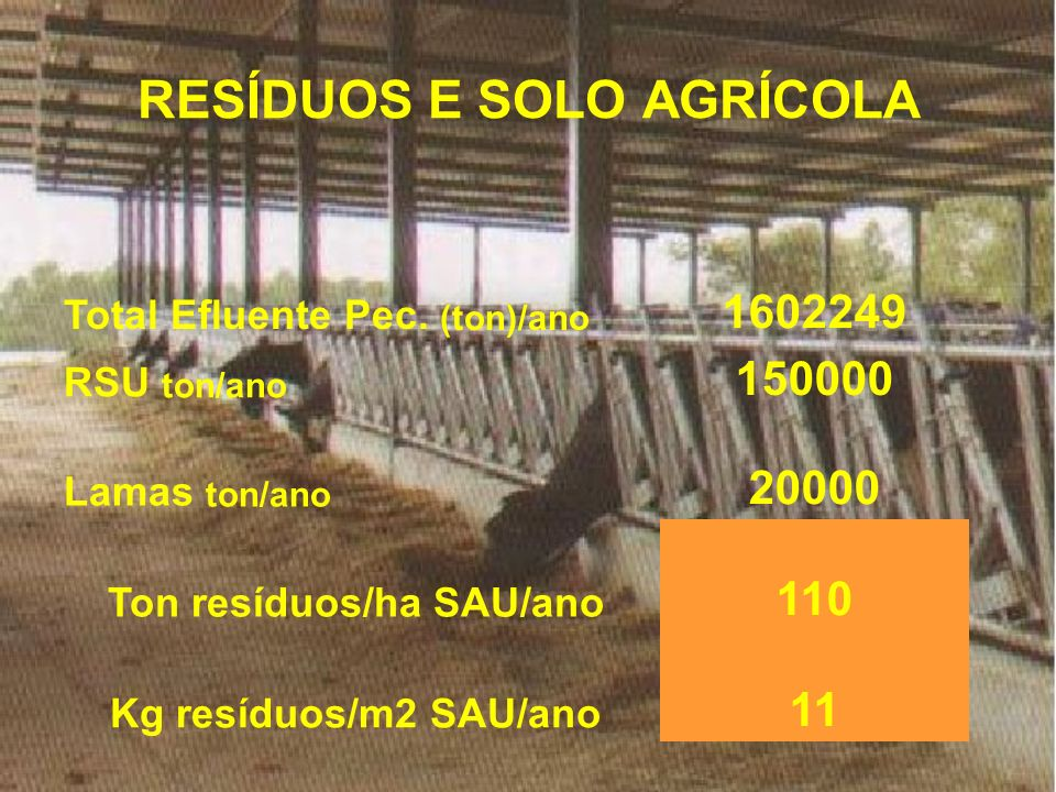 RESÍDUOS E SOLO AGRÍCOLA Total Efluente Pec. (ton)/ano 1602249 RSU ton/ano 150000 Lamas ton/ano 20000 Ton resíduos/ha SAU/ano 110 Kg resíduos/m2 SAU/a