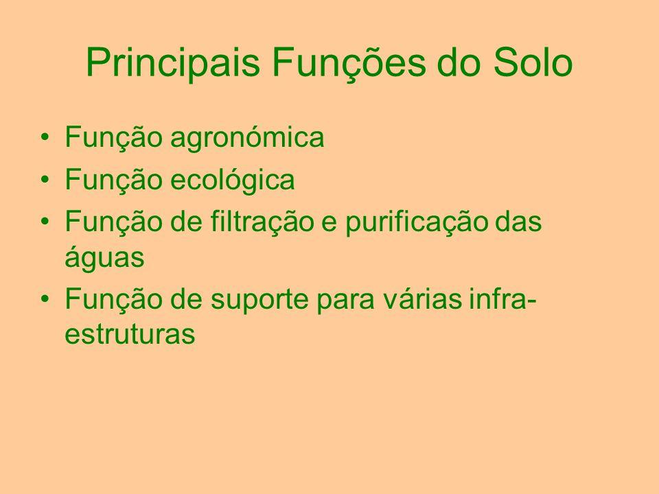 Principais Funções do Solo Função agronómica Função ecológica Função de filtração e purificação das águas Função de suporte para várias infra- estrutu