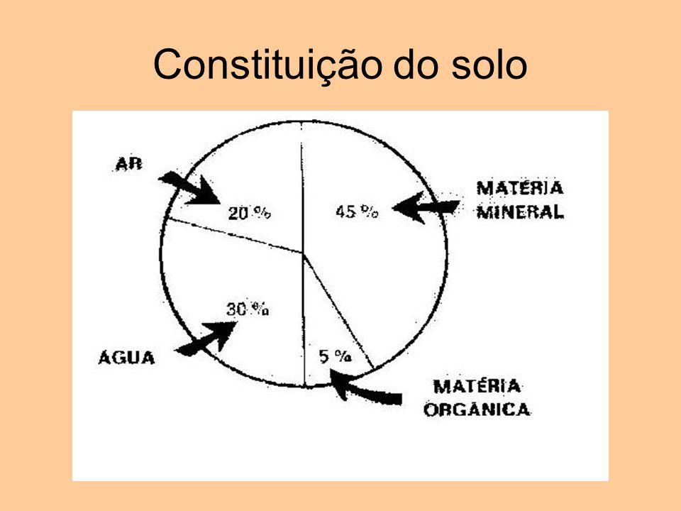 Constituição do solo