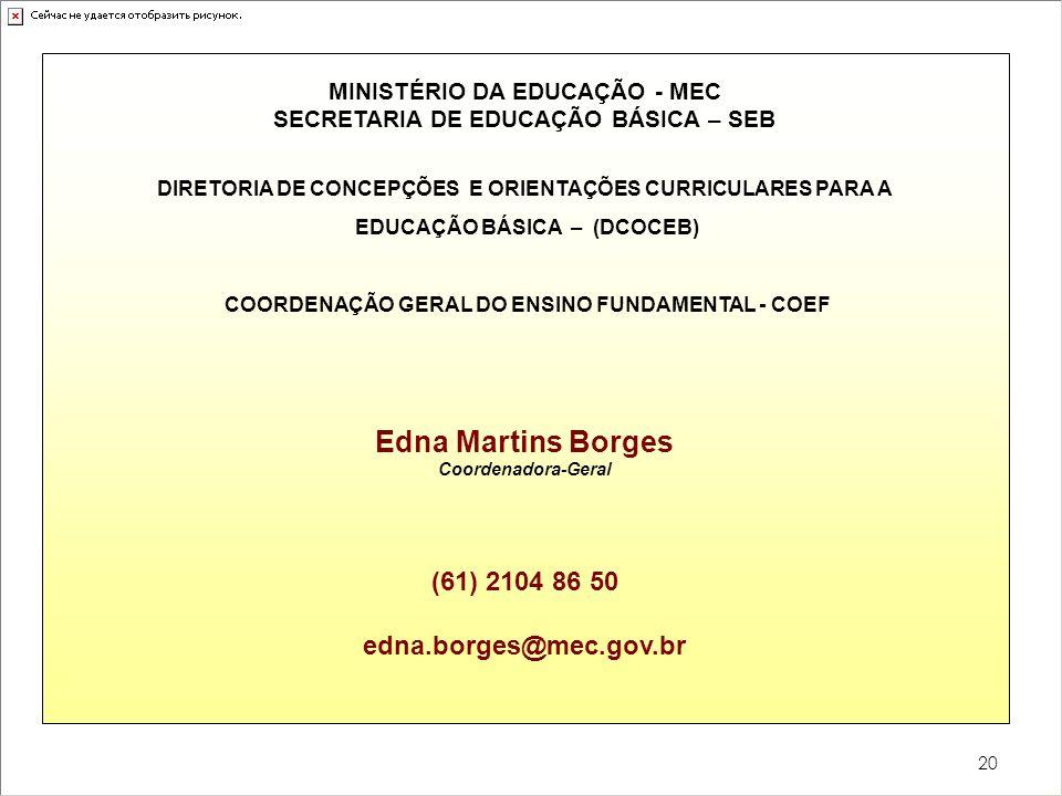 20 MINISTÉRIO DA EDUCAÇÃO - MEC SECRETARIA DE EDUCAÇÃO BÁSICA – SEB DIRETORIA DE CONCEPÇÕES E ORIENTAÇÕES CURRICULARES PARA A EDUCAÇÃO BÁSICA – (DCOCE