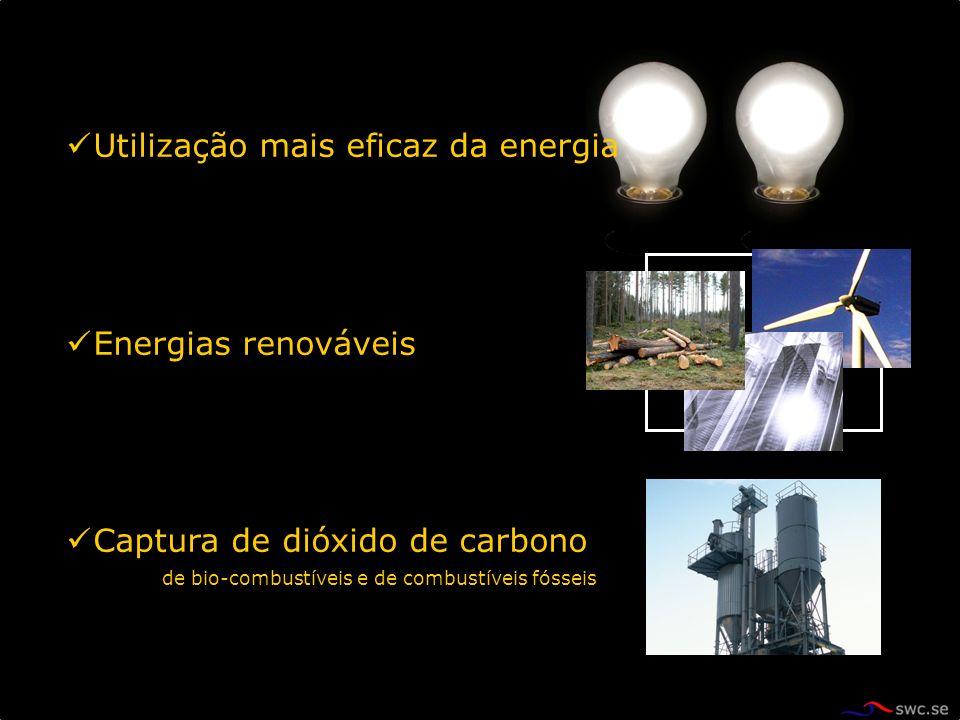 Utilização mais eficaz da energia Energias renováveis Captura de dióxido de carbono de bio-combustíveis e de combustíveis fósseis