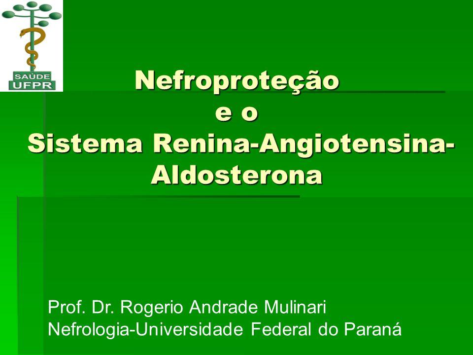 Nefroproteção e o Sistema Renina-Angiotensina- Aldosterona Prof. Dr. Rogerio Andrade Mulinari Nefrologia-Universidade Federal do Paraná