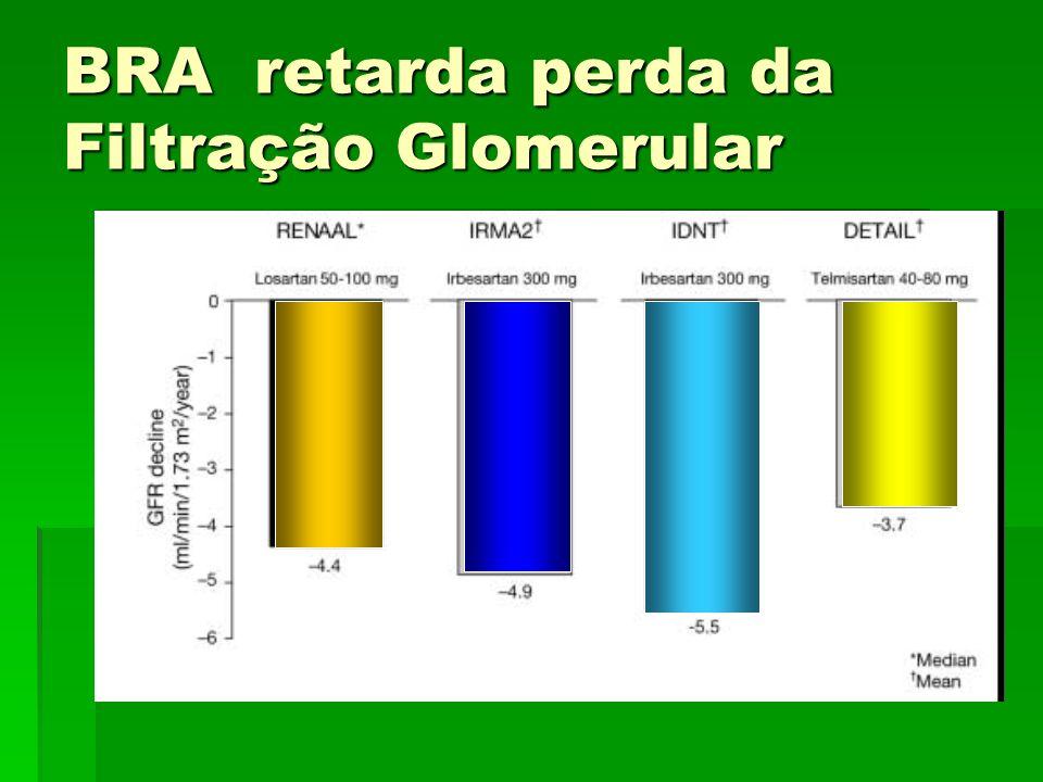 BRA retarda perda da Filtração Glomerular