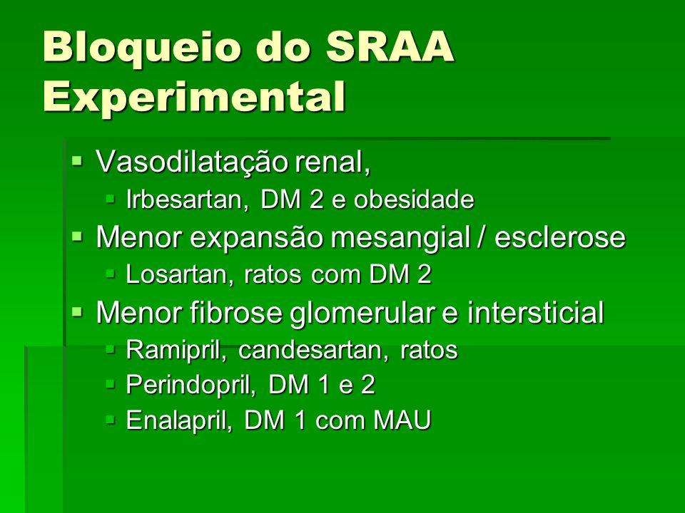 Bloqueio do SRAA Experimental Vasodilatação renal, Vasodilatação renal, Irbesartan, DM 2 e obesidade Irbesartan, DM 2 e obesidade Menor expansão mesan